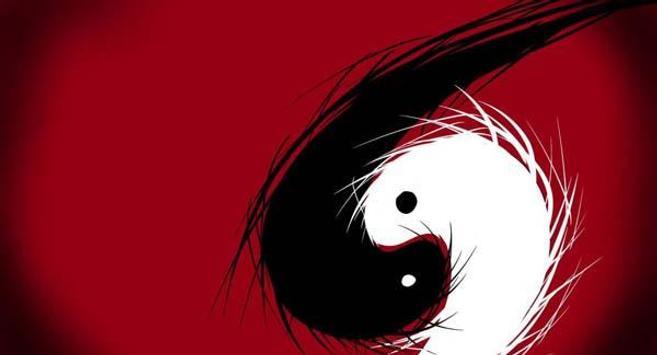 Yin Yang Wallpapers HD poster