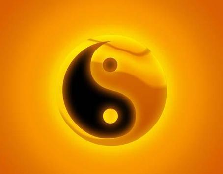 Yin Yang Wallpapers HD apk screenshot