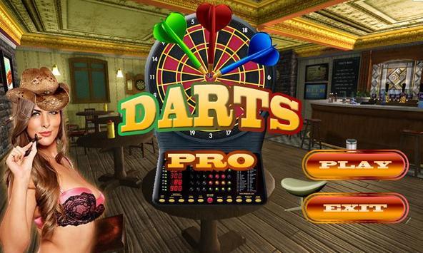 Darts Pro poster