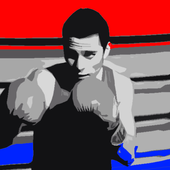 Boxing Games Free Offline icon