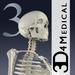 Essential Skeleton 3
