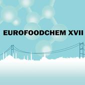 EFC XVII icon