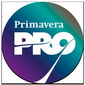 Primavera Pro 2017 Networking icon