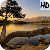 Best Live Nature Wallpaper icon