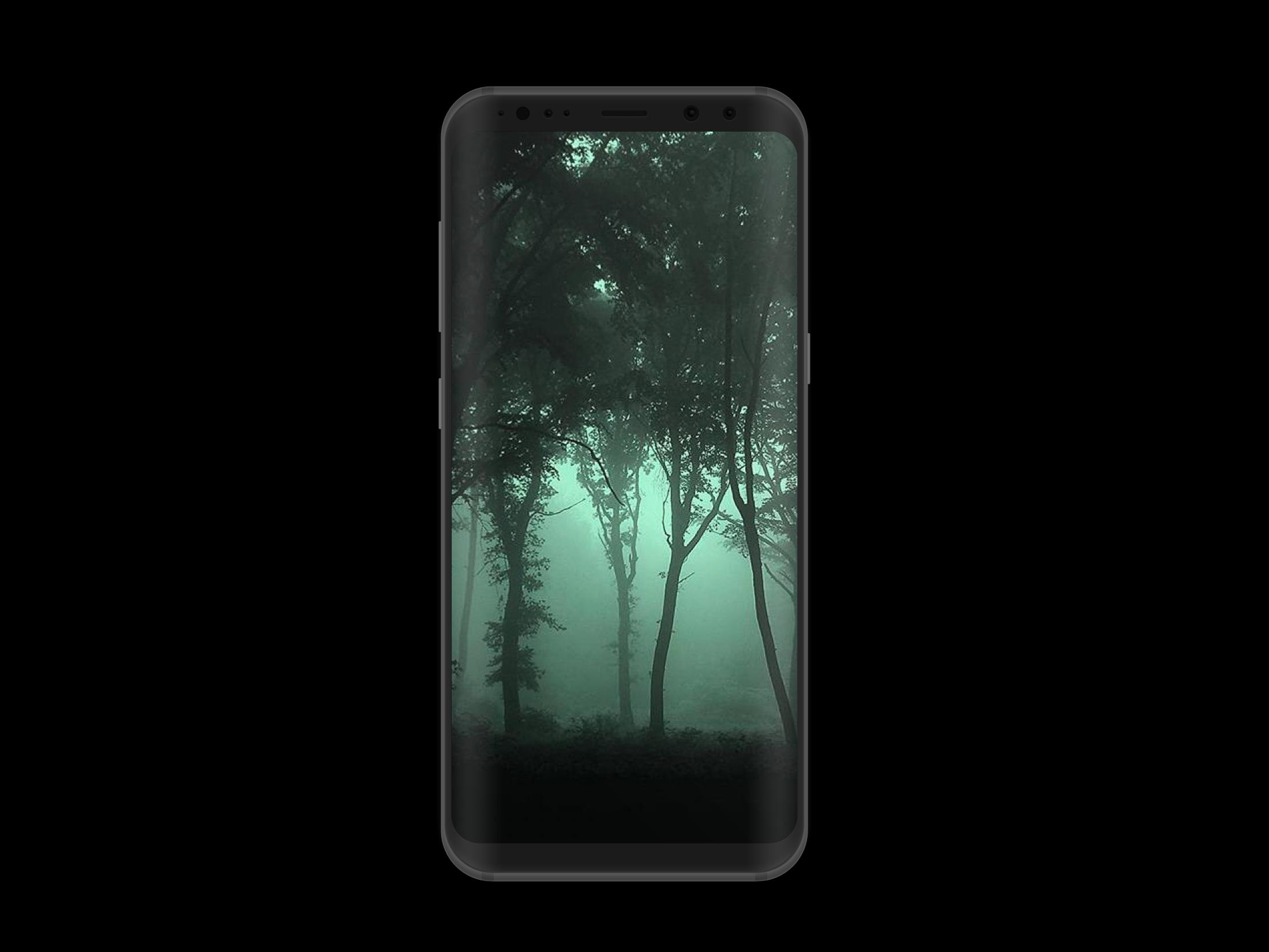 Dark Forest HD Wallpaper for Android ...