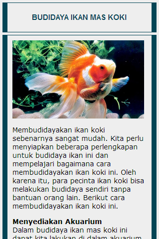 Cara Budidaya Ikan Koki Di Aquarium - InfoAkuakultur.com