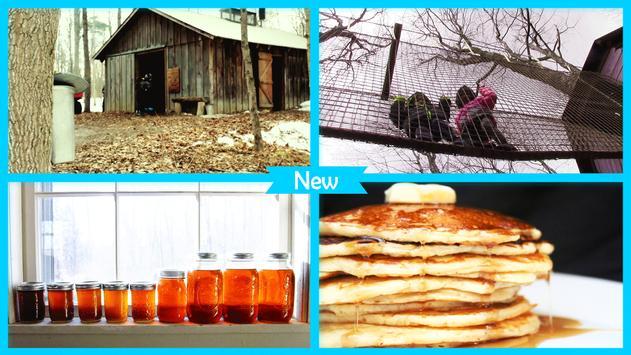 Maple Syrup Festival Live Wallpaper screenshot 3