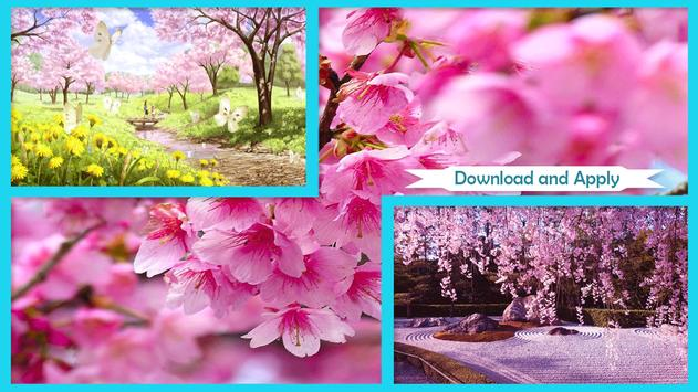Sakura Cherry Blossoms Live Wallpaper poster