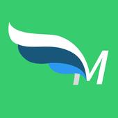 Mercurio icon