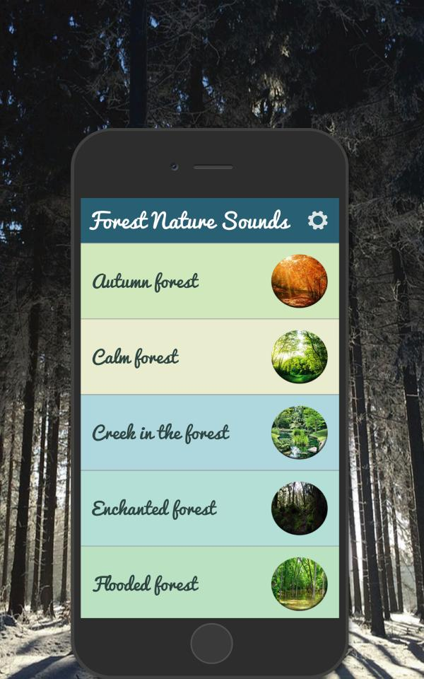 Forest Nature Sounds for Android - APK Download