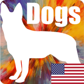 Dog Breeds Quiz - Game icon