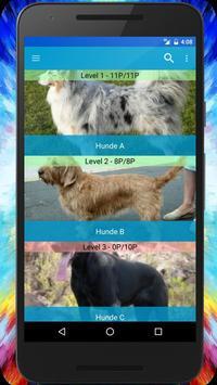 Dog Breeds Quiz - Game poster