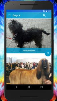 Dog Breeds Quiz - Game screenshot 3