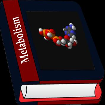 Metabolism screenshot 3