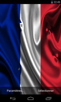Flag of France poster