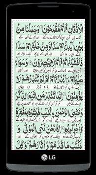 Surah Yasin The Heart of Quran apk screenshot