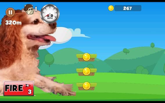 Woof Riders screenshot 11
