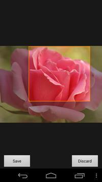 Phone Wallpaper of Roses screenshot 4