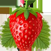 Honeyvoiz Dialer icon