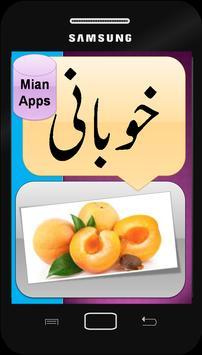 Urdu Fruits Names - Kids Learning- Fruits Pictures screenshot 4