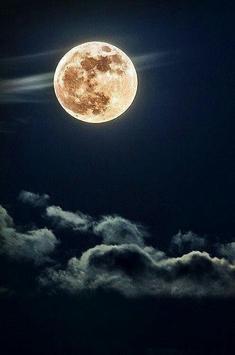 Beautiful Moon Photo Collection screenshot 4