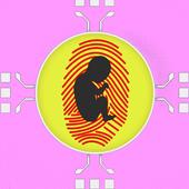 Pregnancy Test Fingerprints icon