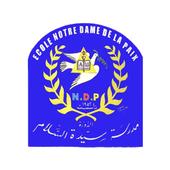NDP - SUIVI ELEVE icon