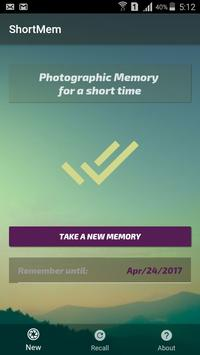 Memory Extension poster