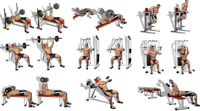 Best Chest Workout Free Poster