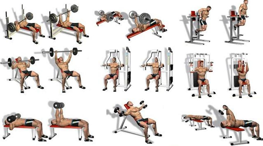 chest n triceps workout - 899×500