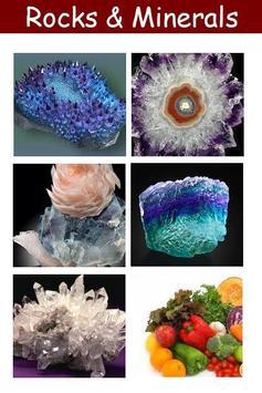 Rocks & Minerals Book poster
