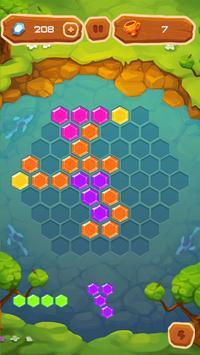 Hexa Fever Summer screenshot 14