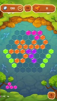 Hexa Fever Summer screenshot 19