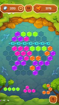 Hexa Fever Summer screenshot 2