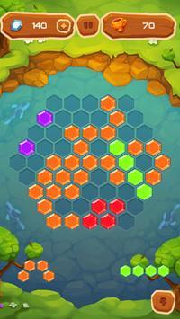 Hexa Fever Summer screenshot 3