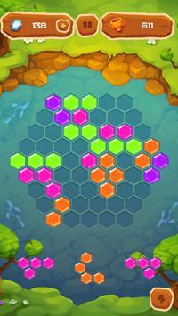 Hexa Fever Summer screenshot 4