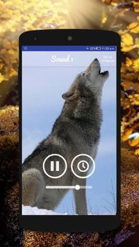 Wolf Sounds - Gray wolf Sounds apk screenshot