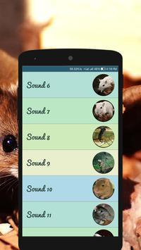 Mouse and Rat Sounds screenshot 1