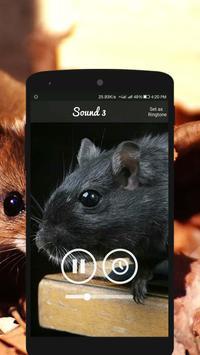 Mouse and Rat Sounds screenshot 3