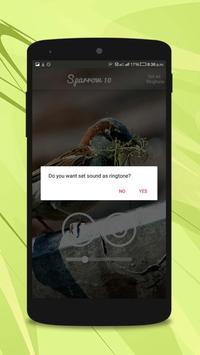 Sparrow Sounds screenshot 4