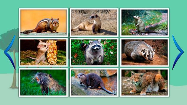 Animal World for Kids (Free) screenshot 7