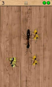 insect smarsher poster