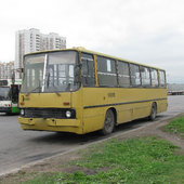 Wallpapers IKARUS Bus icon