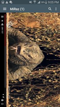 Shi4 - رامز تحت الارض apk screenshot