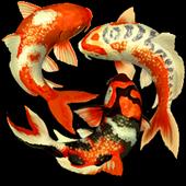 Koi fish Widget/Stickers icon