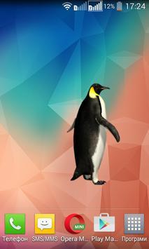 Funny Penguin Widget/Stickers poster