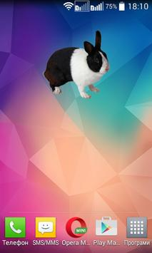 Bunny Widget/Sticker poster