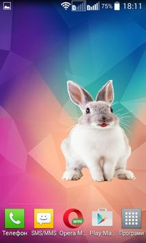 Bunny Widget/Sticker apk screenshot