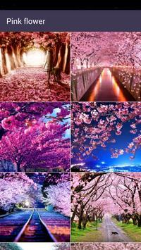 Aroma flower Wallpaper poster