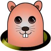 두더지팡팡 icon